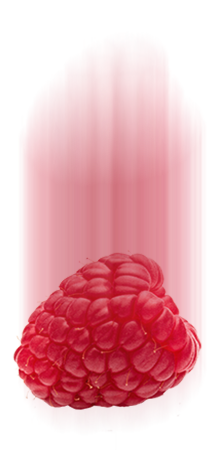 https://www.iscreamrolls.rs/wp-content/uploads/2017/05/raspberry-1.png